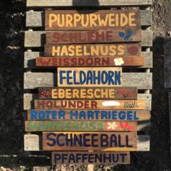 Schilderwald Foto und Schilder: Svenja Steinfelder